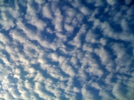 Fish scale clouds