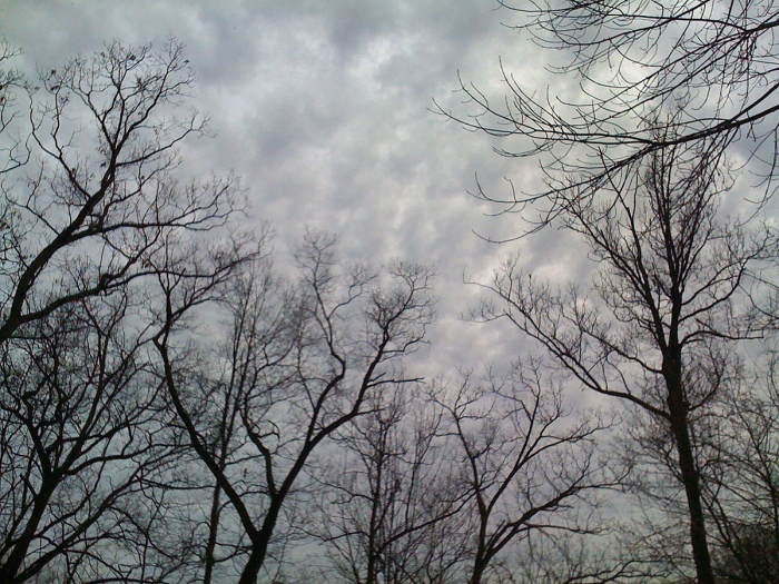 clouds | composerinthegarden