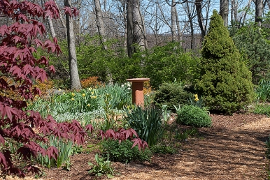 Herb Garden in April