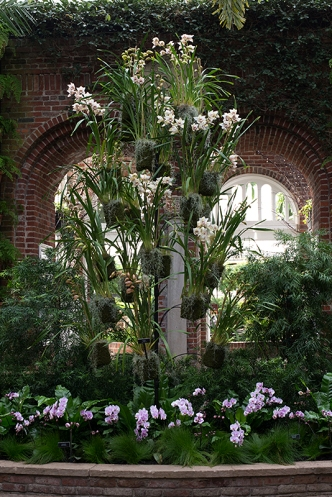 A first look at the tower of orchids in the Palm Court