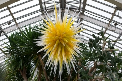 Chihuly glass sun in the Desert Room