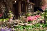 The Scorer's Garden
