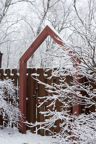 Snowy arbor
