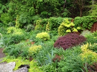 Garden in late May