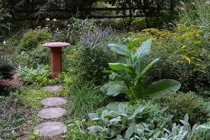 Path to the birdbath