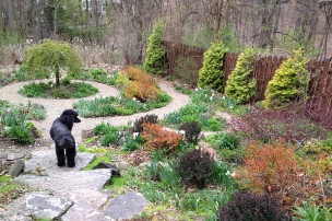 Angel in the April garden
