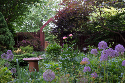 The arbor in early morning