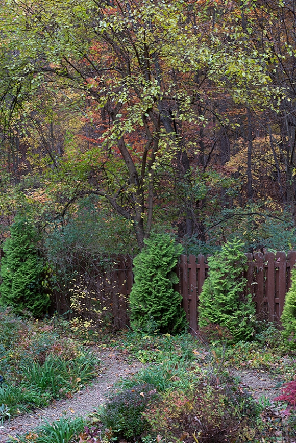 Fall fenceline