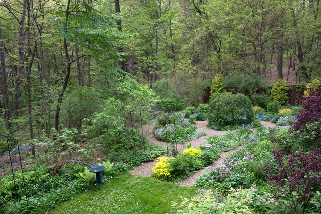 Lower garden in May