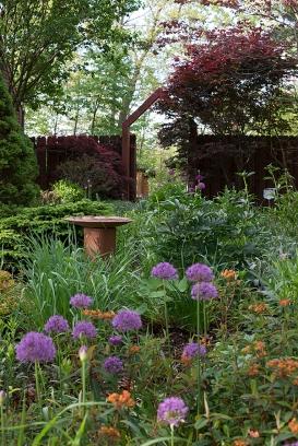 Herb circle in May