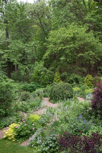 Lower garden in early June