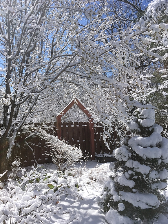 Snow and sun at the gate