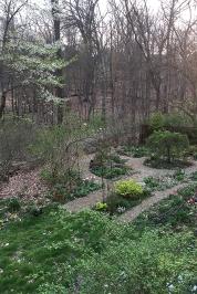 Mid-April garden