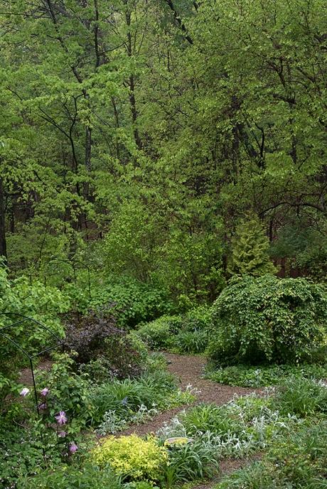 gardentreesWP