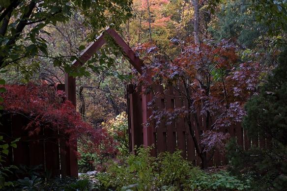 autumngate