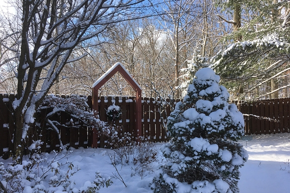 snowygate