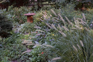 Herb circle in late autumn bloom