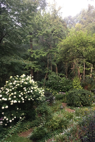 Lower garden in September