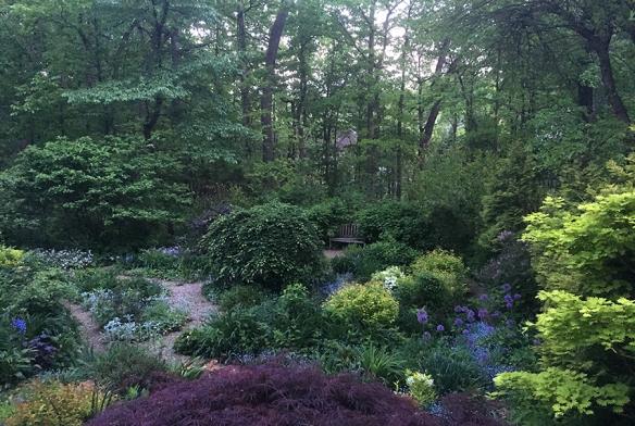 eveninggarden
