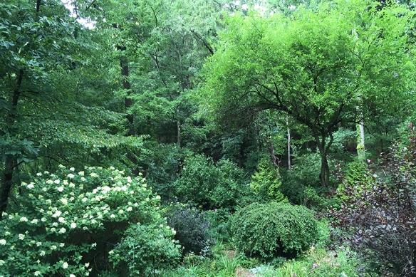 gardenafterrain